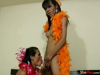 Bigtitted ladyboy girlfriends enjoy blowjob
