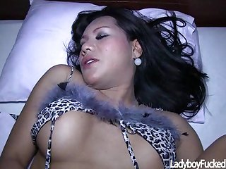 Ladyboy Pinky Gets Cock In Her Tight Ass